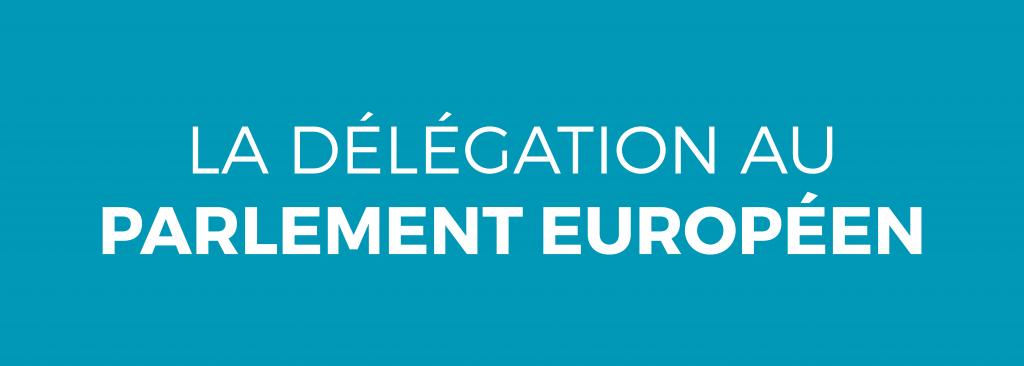 La délégation au parlement européen